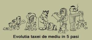evolutia taxei
